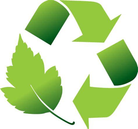 Essay on the environment in irishman
